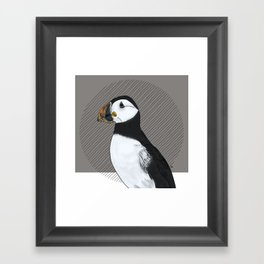 FEATHER FEST - PUFFIN Framed Art Print