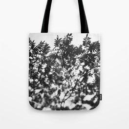 Leaf Study #7 Tote Bag