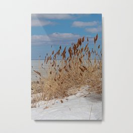 Tame a Wild Wind (vertical) Metal Print