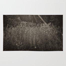 Vintage Morning Field Light Rug