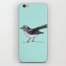 Willy Wagtail iPhone & iPod Skin
