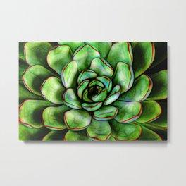 Graphic Succulent Metal Print