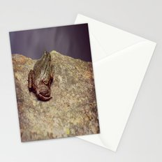 Froggy Stationery Cards