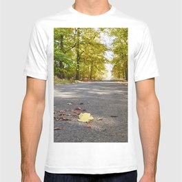 Remote country road through Autumnal woodland. Norfolk, UK. T-shirt