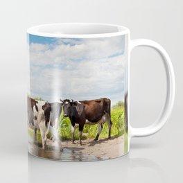 Herd of cows walking across pool Coffee Mug