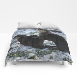 Otters In The Snow Comforters