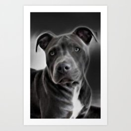Pit Bull lover, a portrait of a beautiful Blue Nose Pit Bull Art Print