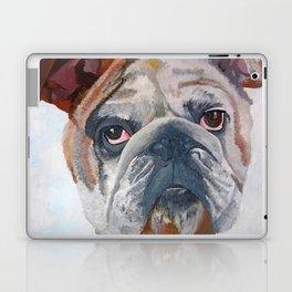 American Bulldog Portrait: Yale Mascot Laptop & iPad Skin