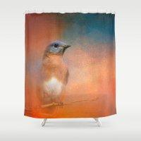 wildlife Shower Curtains featuring Summer Day Bluebird - Wildlife by Jai Johnson