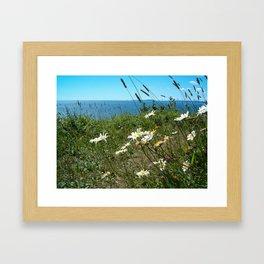 Cape Split flowers Framed Art Print
