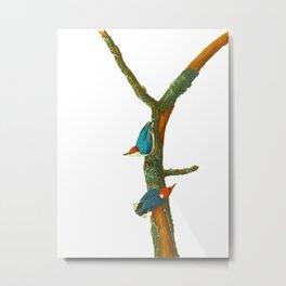 Turquoise Bird Metal Print