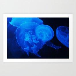 Blue Jelly Fish Art Print