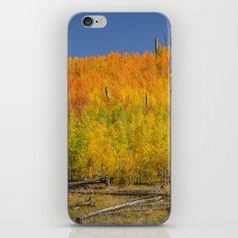 Autumn Colors - North_Rim Grand_Canyon, AZ iPhone Skin