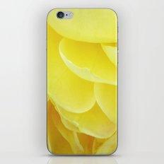 Petals in Yellow iPhone & iPod Skin