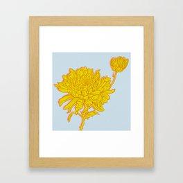 Chysanthemum in Saffron Framed Art Print