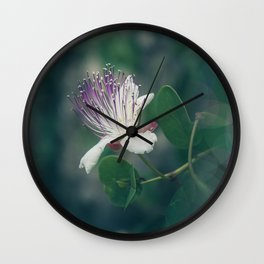 Caper flower Wall Clock