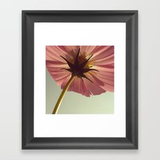 FLOWER 008 Framed Art Print