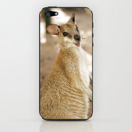 Smiling Kangaroo iPhone Skin
