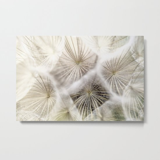 Into the deep- Dandelion Seed Head- Close up Metal Print