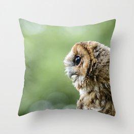 Brecon Owl Throw Pillow
