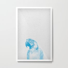 Parrot 01 Metal Print
