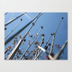 Skyscrapers Reach Canvas Print