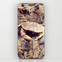 crab iPhone & iPod Skins featuring Crab by Ken Seligson