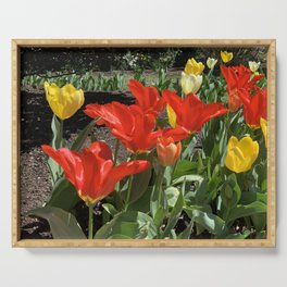 Lewes Tulips Serving Tray