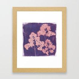 Cyanotype No. 10 Framed Art Print