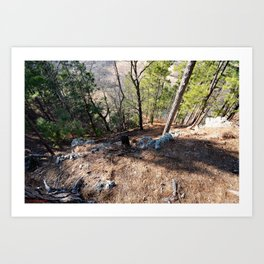 Climbing Up Sparrowhawk Mountain above the Illinois River,No. 5 of 8 Art Print