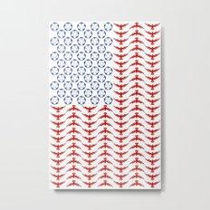 Swallow Stars, Eagle Stripes Metal Print