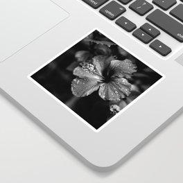 Black & White Hibiscus Sticker