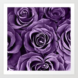 Rose Bouquet in Purple Art Print