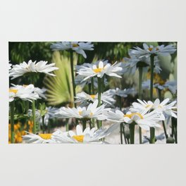 A Garden of White Daisy Flowers Rug