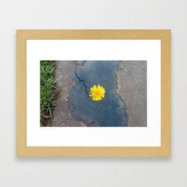 Blue Composition with Dandelion Framed Art Print