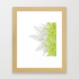 PALE GREEN & GREY ABSTRACT WOODLAND FERNS ART Framed Art Print