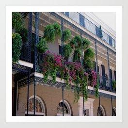 New Orleans Florals Art Print