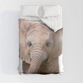 Cute Baby Elephant Comforters