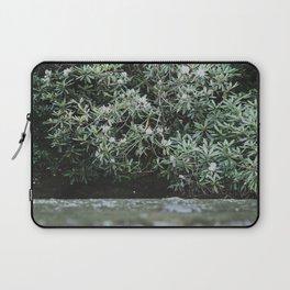 Streams of Living Water 2 Laptop Sleeve