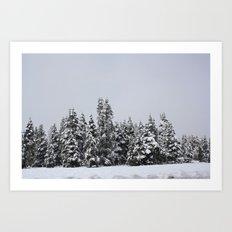 White Forest Art Print