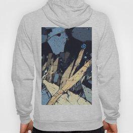 Graphic minerals Hoody