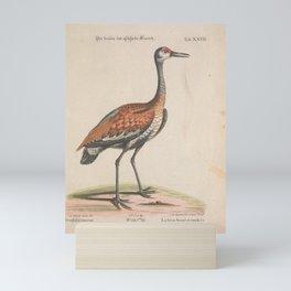 Brown or Sandhill Crane3 Mini Art Print