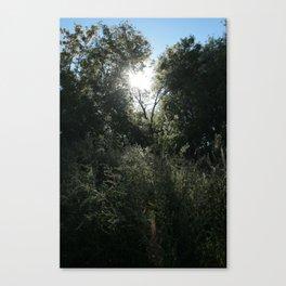 Remarkable Radiance Canvas Print