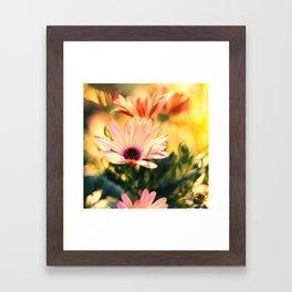 A Piece of Summer Framed Art Print