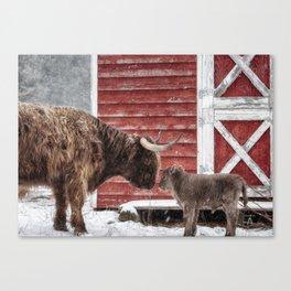 Highland Love Canvas Print