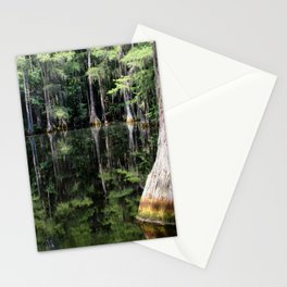 Florida Beauty 4 Stationery Cards