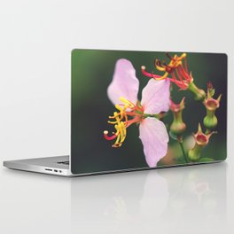 A Macro World Laptop & iPad Skin