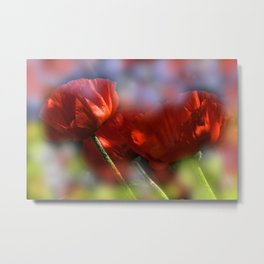 red poppies - first summerdays Metal Print