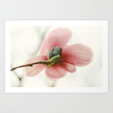Portraits of Spring - I Art Print