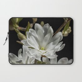 An Introduction to Spring Laptop Sleeve
